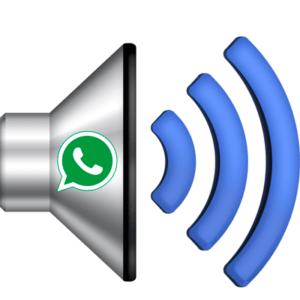 whatsapp-zvuk-300x300.png