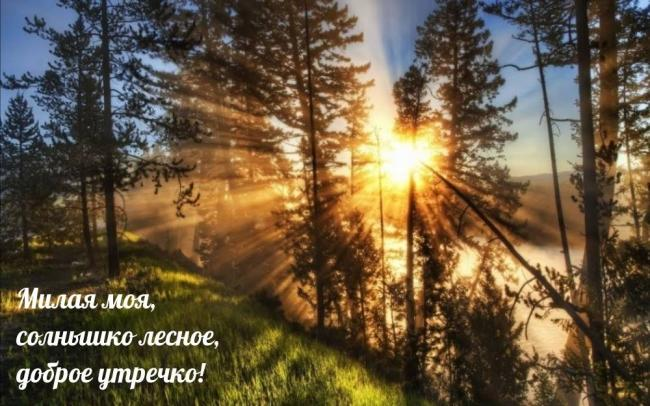dobrogoutra_ru_1648.jpg