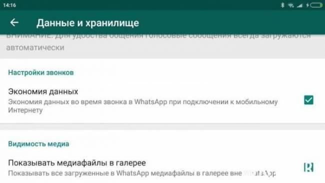 WhatsApp-Image-2018-06-21-at-22.21.22.jpeg