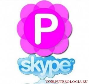 pamela-for-skype-300x284.jpg