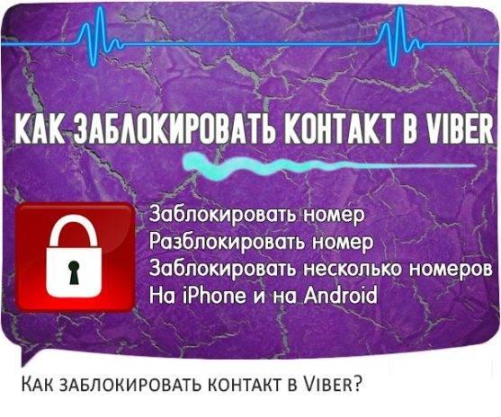 kak-zablokirovat-kontakt-v-viber-head-wpp1605809786460-557x464.jpg