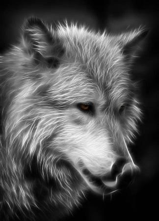 2-wolf-eyes-athena-mckinzie-1.jpg