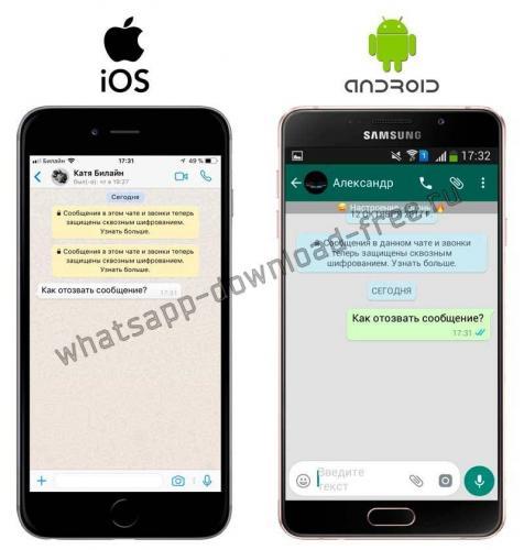 whatsapp-plus-soobsheni-do-otziva-android.jpg
