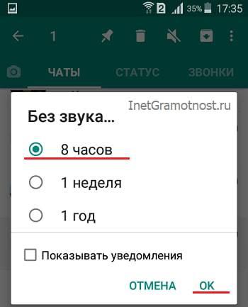 prodolzhitelnost-otklyucheniya-zvuka-whatsapp-na-androide.jpg