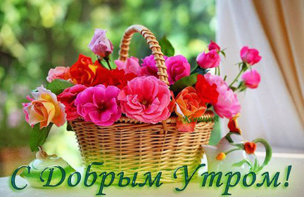 dobrogoutra_ru_37.jpg