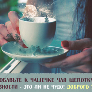 Картинки прикольные открытки с добрым утром с чашкой чая