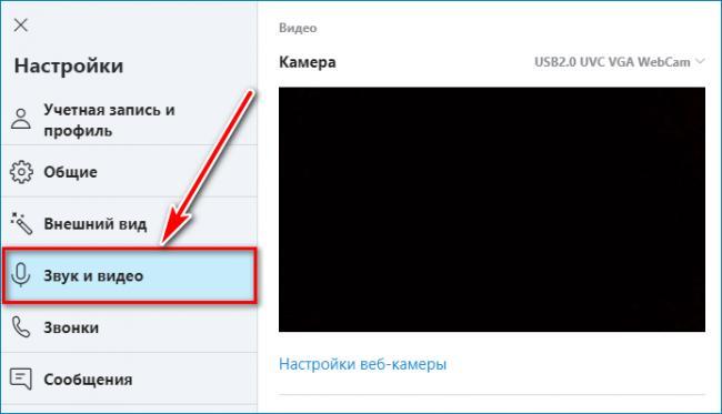zvuk-i-video-skype.png