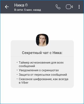 sekretnyy-chat-v-vaybere.png