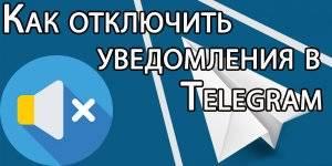 1549628268_5.jpg
