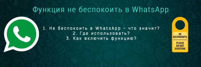 whatsapp-ne-bespokoit-head.jpg