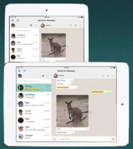 WhatsApp-для-Apple-iPad.jpg