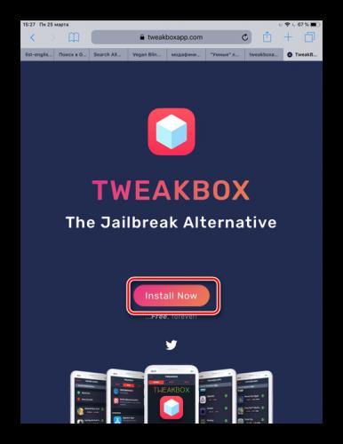 Perehod-na-ofitsialnyj-sajt-TweakBox-i-skachivanie-prilozheniya-na-iPad.png