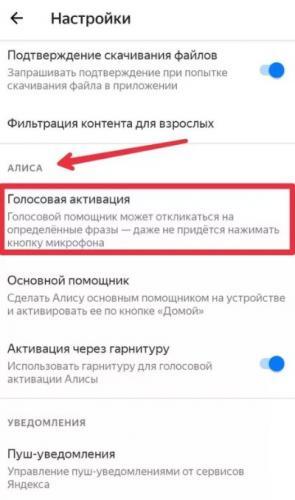 net-zvyka-videozvonok-whatsapp1.jpg