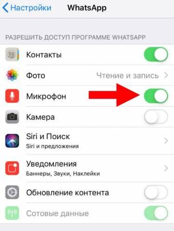 net-zvyka-videozvonok-whatsapp2.jpg