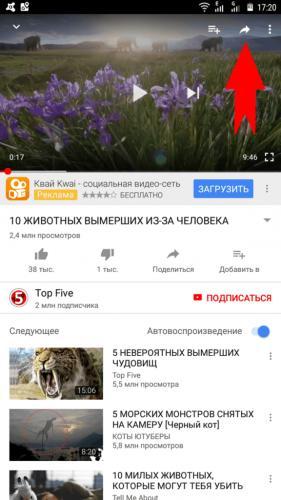 kak-otpravit-video-v-Vatsape-1-576x1024.png