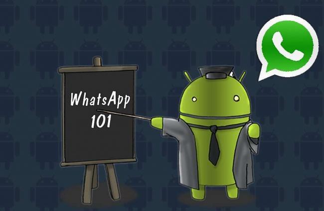WhatsApp2323.jpg