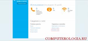 schet-skype-300x139.png