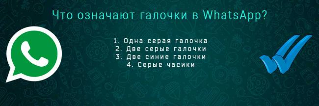 whatsapp-galochki-head.jpg