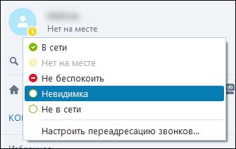 status-v-skype.png