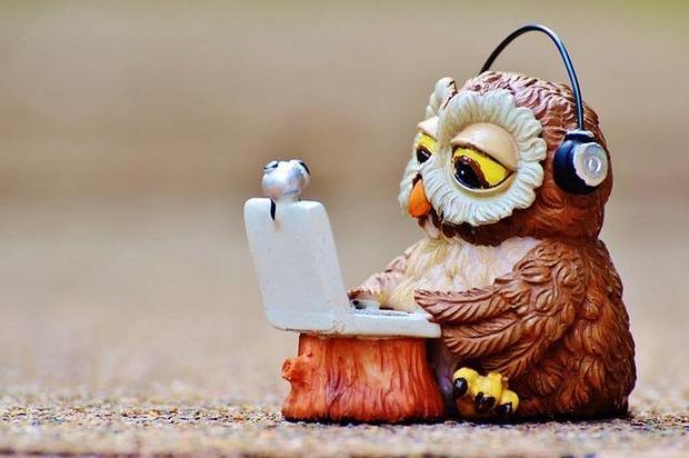Skype-Owl.jpg
