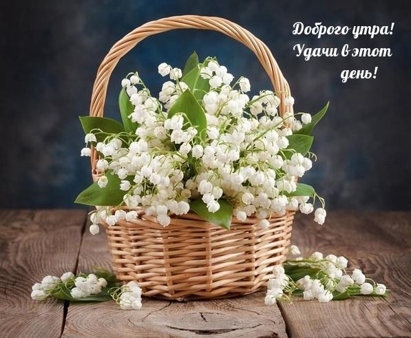 textopics_ru_26467.jpg