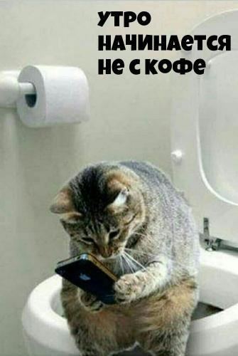 dobrogoutra_ru_1174.jpg