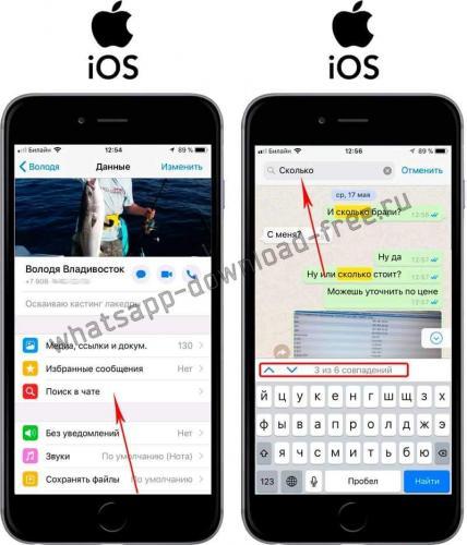 whatsapp-poisk-soobsheniya-v-chate-iphone.jpg