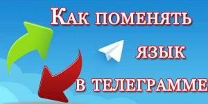 1550060775_4.jpg