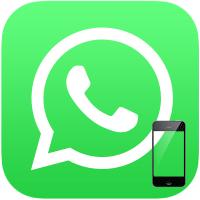 skachat-vatsap-na-telefon-maykrosoft-1.png