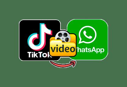 video-iz-tik-toka-v-vatsap.png
