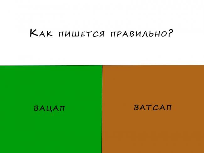 vatsap.png