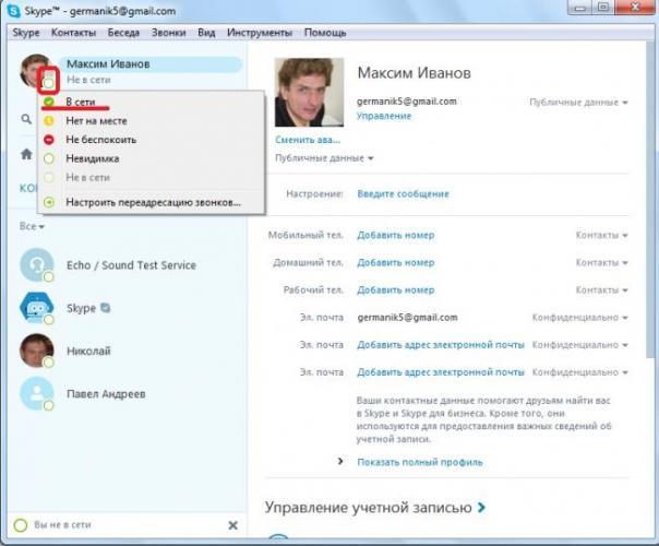 Izmenenie-statusa-v-programme-Skype.png