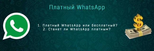 whatsapp-platnii-head.jpg