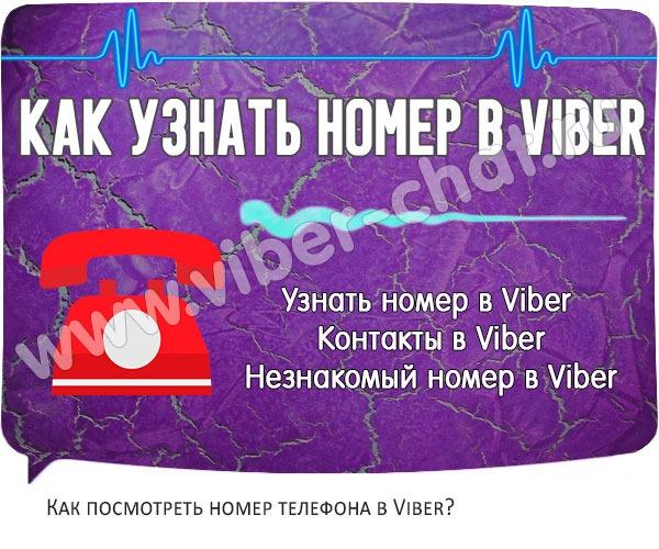 head-nomer-v-viber-wpp1605804675927.jpg