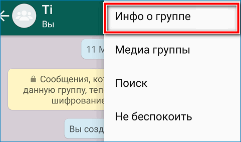 Informatsiya-o-gruppe-Vatsap.png