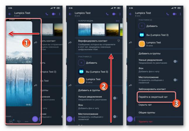 viber-dlya-android-punkt-perejti-v-sekretnyj-chat-na-ekrane-informacziya-besedy.png