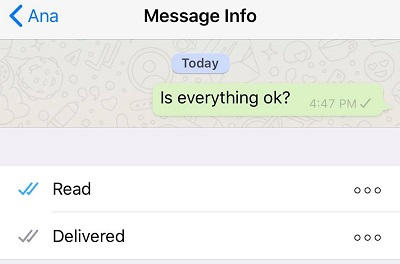 WhatsApp один тик