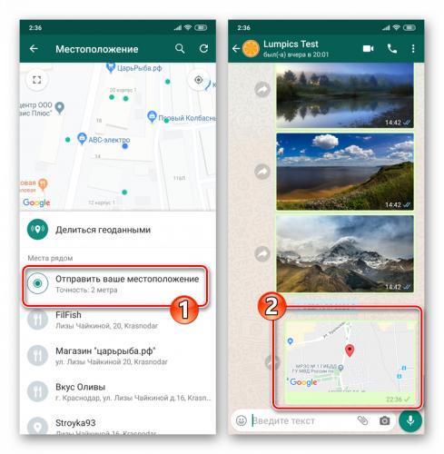 whatsapp-dlya-android-edinorazovaya-otpravka-svoej-geopoziczii-v-chat-ili-gruppu.png