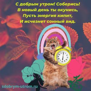 Картинки прикольные с надписями с добрым утром С котом