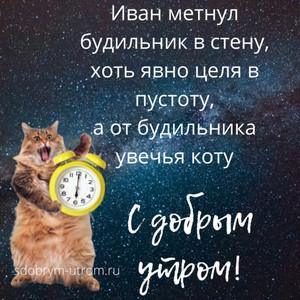 Картинки прикольные открытки с добрым утром Иван метнул будильник в стену  - с добрым утром