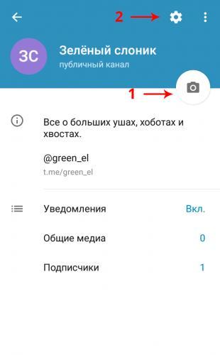 Экран информации о канале в мобильном приложении