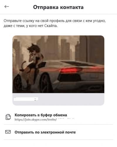 kak_nt_ch_skype_003-min.png