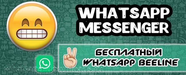 whatsapp-beeline-1.jpg