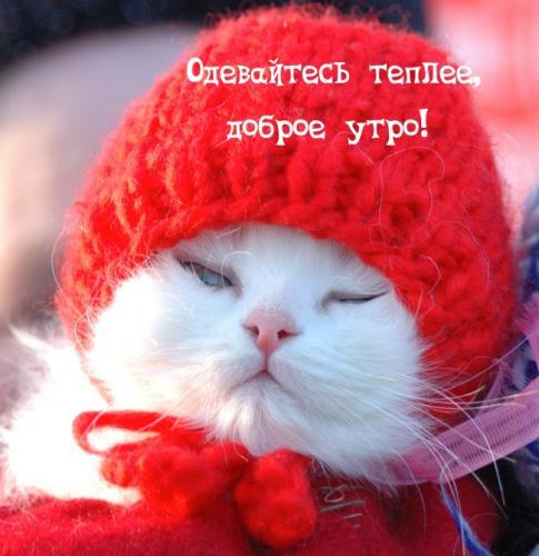 Одевайтесь теплее, доброе утро!.