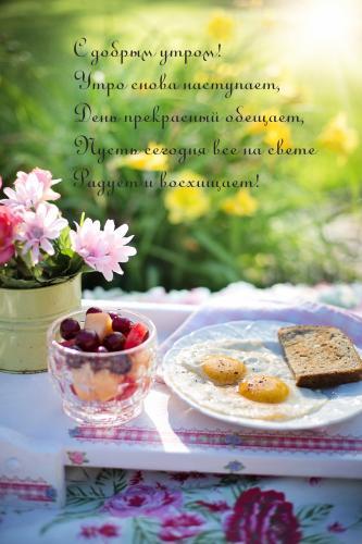 Утро снова наступает!.