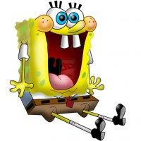 sponge_fb6e8cfb0d9beb11fc94ae1e6864c12d.jpg