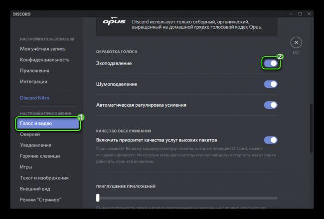 Nastrojka-ehopodavleniya-Discord.png