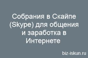 sobraniya_v_skajpe.jpg