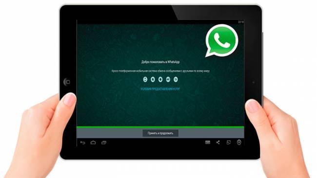 whatsapp-dly-plansheta.jpg