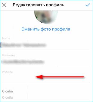 Vvod-ssylki-iz-generatora.png